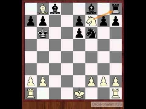 Скачать видео шахмат гамбит морра