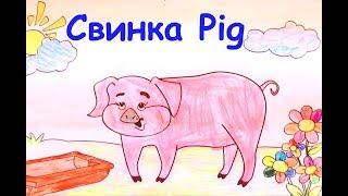 English for kids/Английский для детей. Учим животных. Свинка Pig