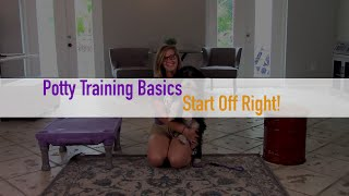 Potty Training Basics | Dog Training for Puppies and Adults | Cadence K9 Miami