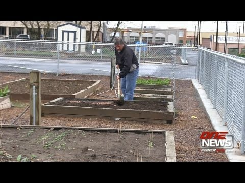 Community Gardening in Moses Lake and Ephrata