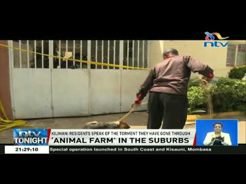 Kilimani residents speak of the torment Chinese neighbours put them through