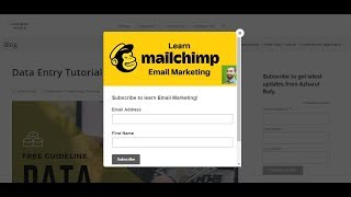 6. Add MailChimp Signup and Popup Form Into WordPress Website