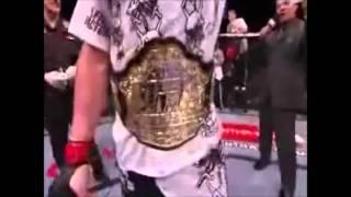 Brock Lesnar vs Alistair Overeem  UFC 141