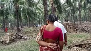 మరో సారీ M.L.A chintamaneni Prabhakar gari ahankaram