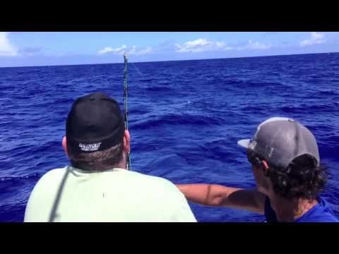 The Cook Islands - Marlin Queen Fishing Charter