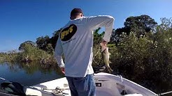 Eagle Lake FL Bass