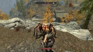 The Elder Scrolls V: Skyrim 22-5-2016 (3)