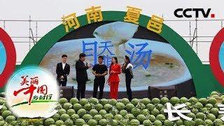 《第二届河南夏邑西瓜节开幕式》 20190516  CCTV农业