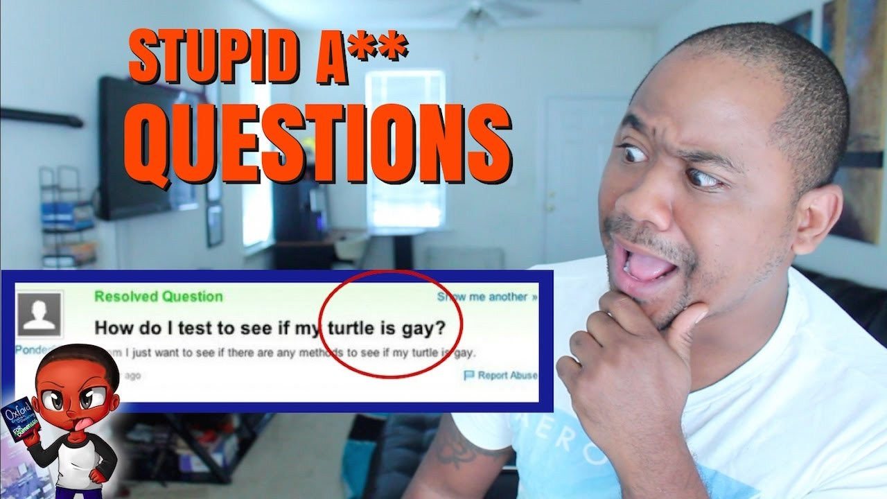 Funny Meme Questions To Ask : Dumbest fails stupid questions on the internet yahoo