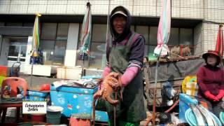 Corée du Sud : Voyage vers le futur - Echappées belles