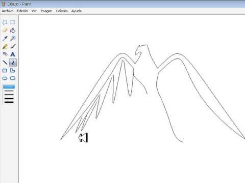 Como Dibujar Un Aguila Pasos (Basicos) - YouTube