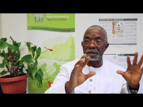 Interview with Godfrey Nzamujo (Songhai) at the Agroecology Symposium