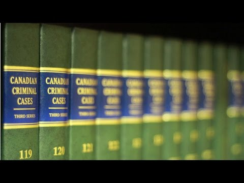 family law attorneys lawyers | employment law attorney | attorney is a lawyer
