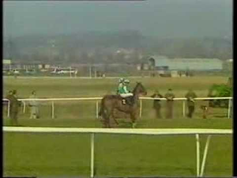 1992 Byrne Brothers Compton Chase