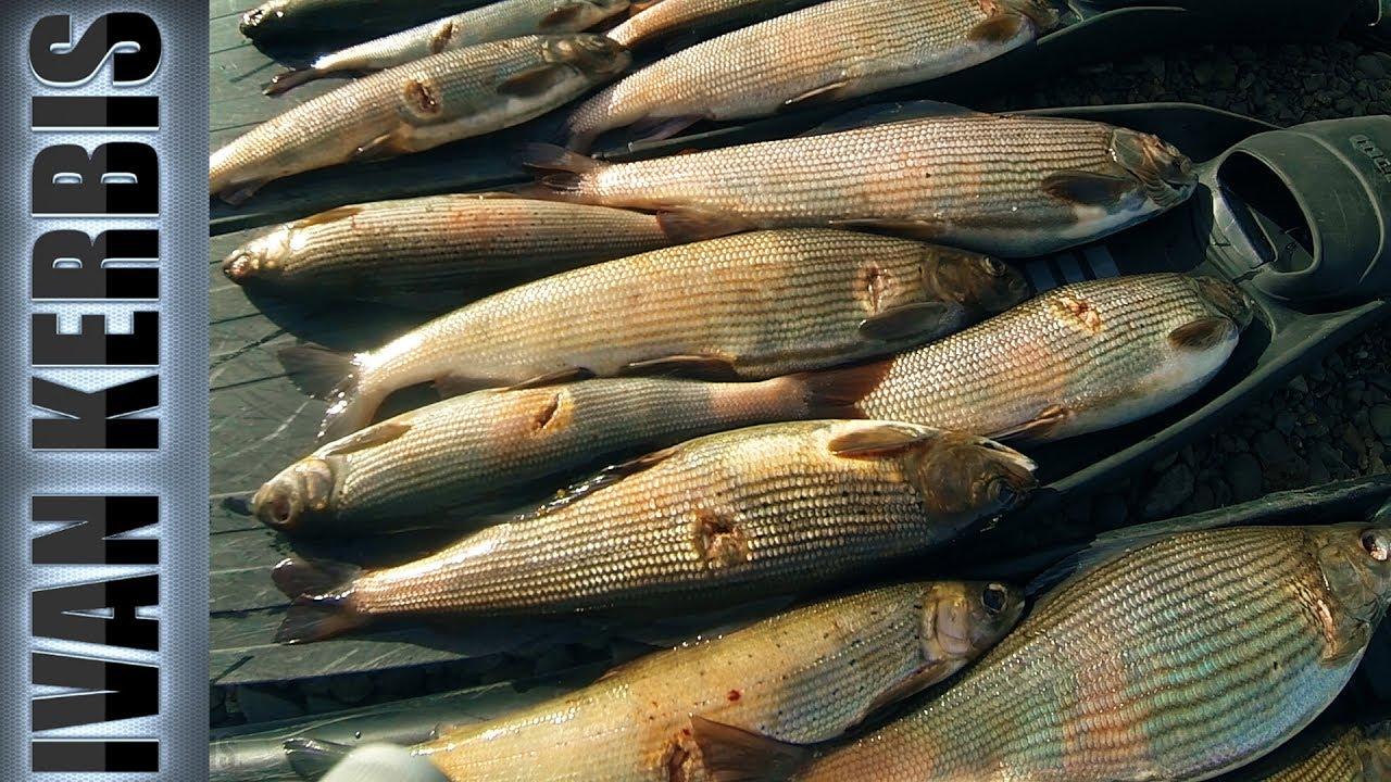 рыбалка подводная в сибири
