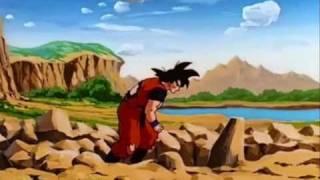 Dbz Goku Dota