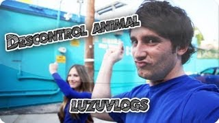 DESCONTROL ANIMAL - LuzuVlogs