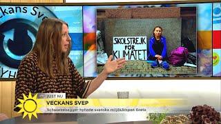 Schwarzenegger hyllar svenska miljökämpen Greta - Nyhetsmorgon (TV4)