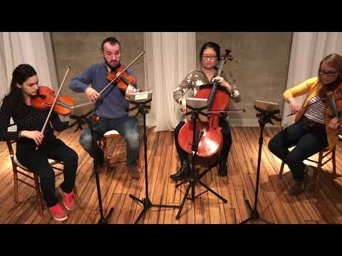 Stitches by Shawn Mendes  - Philadelphia String Quartet version - download sheet music -