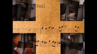 2019 ISB Presentation: Bachrilege - Pizzicato Articulation from Bach to Bebop
