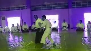 Aikido Seminar - Kawasaki Sensei & Kumagai Sensei