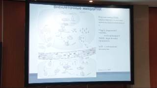 Экспрессионный анализ микроРНК при РМЖ(Экспрессионный анализ микроРНК для диагностики и прогноза рака молочной железы Д.б.н. Н.И. Поспехова (Москва..., 2013-03-21T06:42:57.000Z)
