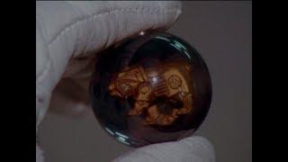 "Power Rangers Wild Force - Bear Crystals | Episode 7 ""The Bear Necessities"""