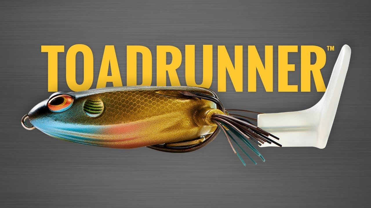 ToadRunner Christie Rayburn full video