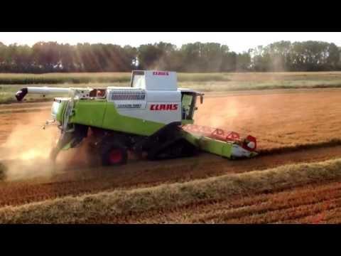 Claas Lexion 580 rice harvest