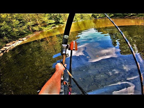 BOWFISHING With A RECURVE Bow 2019 - AMAZING Instinctive Archery Shots - Bob Lee Bows