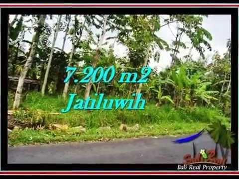 Affordable Tabanan BALI LAND FOR SALE TJTB226