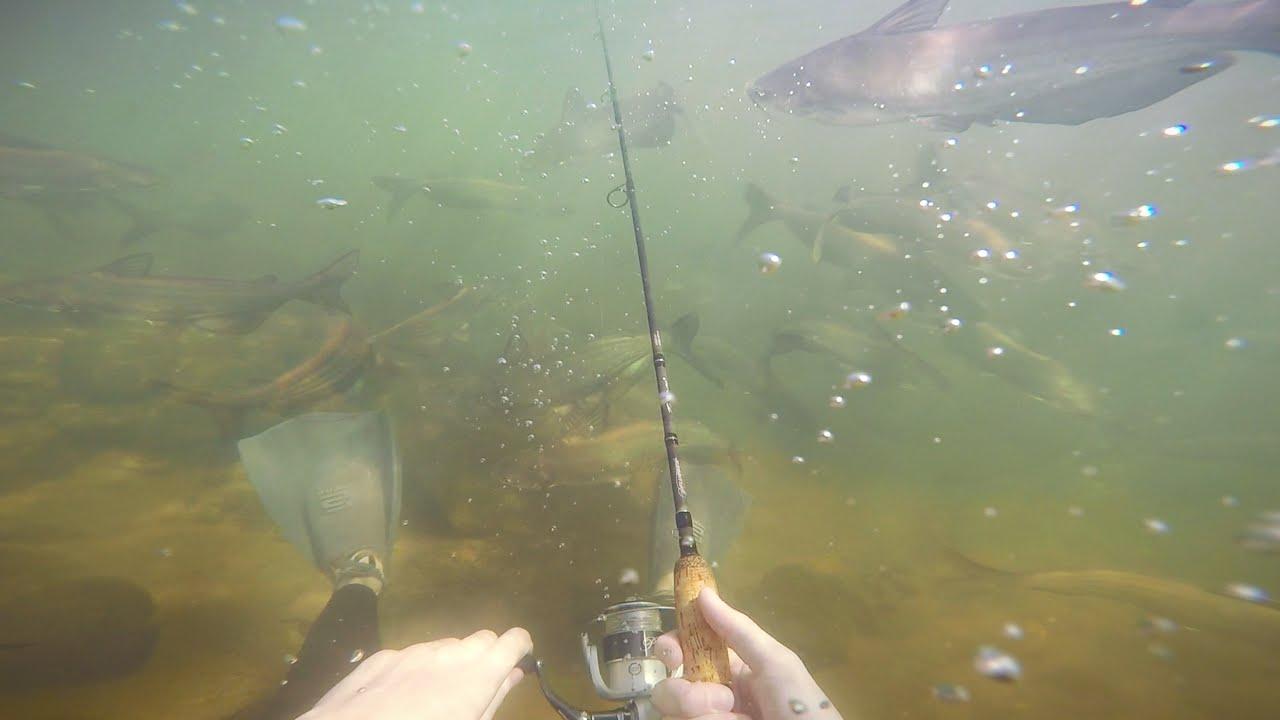 fishing underwater challenge! - youtube, Reel Combo