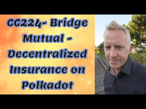 CC224- Bridge Mutual - Decentralized Insurance on Polkadot