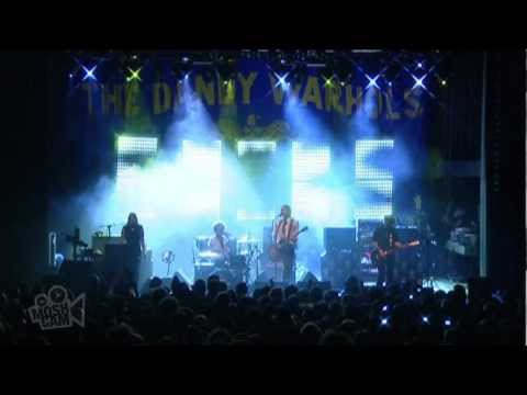 The Dandy Warhols - You Were The Last High (Live in Sydney) | Moshcam