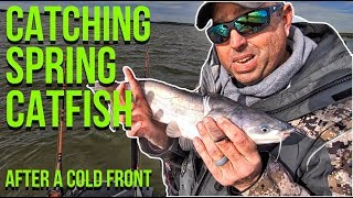 Catching Spring Catfish (After a Cold Front) Catfish Moving!