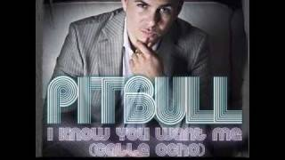 Pitbull - I Know You Want Me Techno Remix / Club Mix (THE TRAK ADDICTS REMIX)