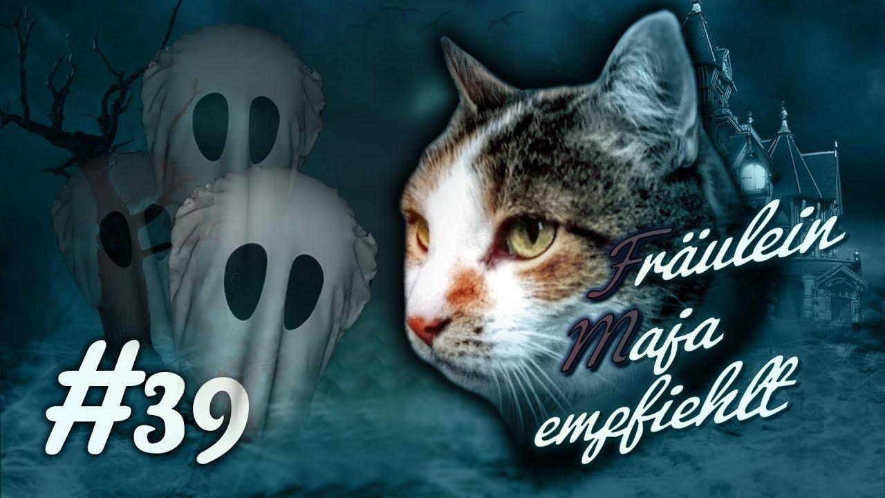 Geister 👻   Sehen Katzen 🙀 Gespenster? Die Erstaunliche Wahrheit über  Spuk! #039