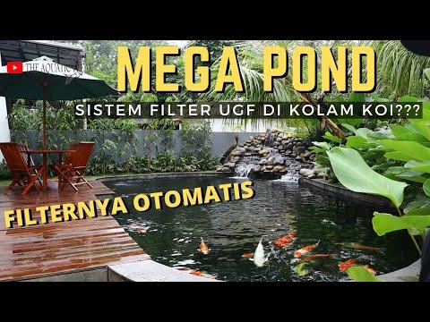 mega-pond-review-dengan-sistem-rotary-drum-filter-vs-sistem-under-gravel-di-kolam-koi
