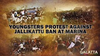 Youngsters Protest Against Jallikattu Ban At Marina
