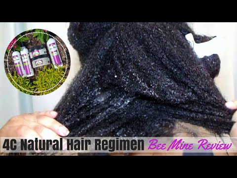Natural Hair Wash Day Routine With Bee Mine