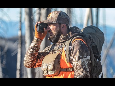 Binocular Harness Review And Comparison