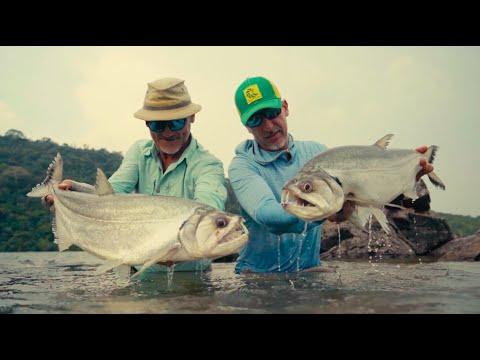 Fly Fishing For Payara In The Brazilian Amazon
