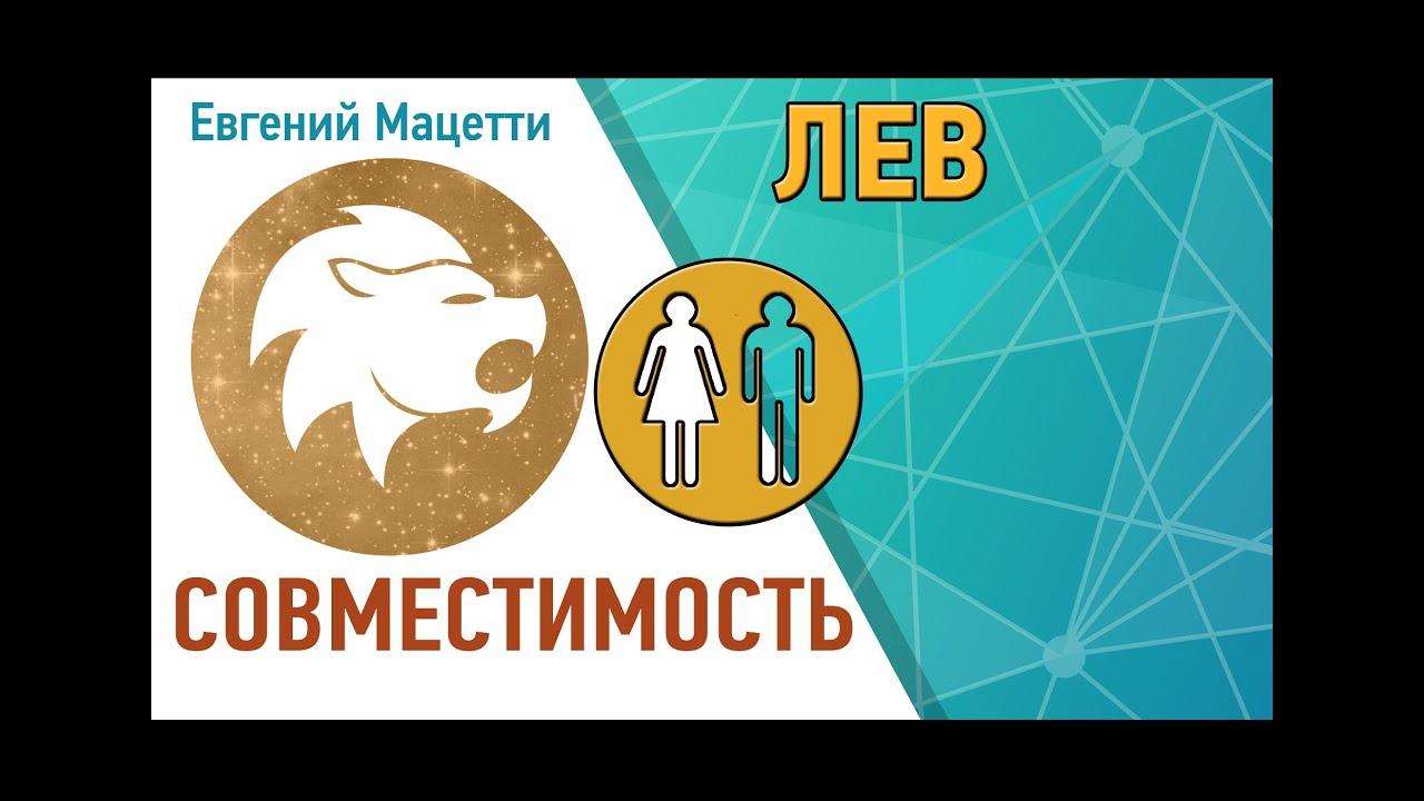 Лев и лев сексуальная совместимость