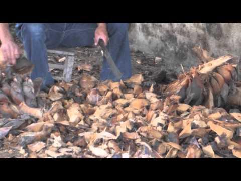Elaboración artesanal del mezcal, Miahuatlán Oaxaca