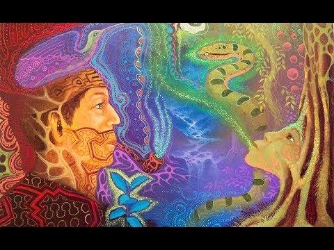 Ayahuasca Calling - Don Valerio Cohaila