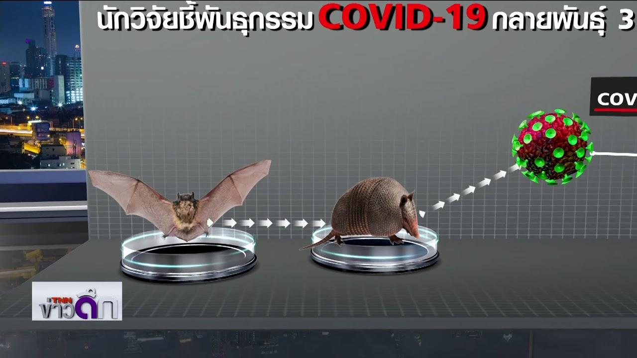 นักวิจัยชี้พันธุกรรม Covid-19 กลายพันธุ์ 3 ชนิด | 10 เม.ย. 63 | TNN ข่าวดึก