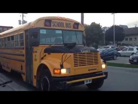2001 Blue Bird International 3800 DT466E School Bus