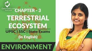 Terrestrial Ecosystem (Chapter - 3)   Environment & Ecology   Shankar IAS Book   In English