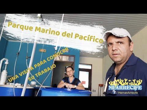 Parque Marino del Pacífico - Costa Rica