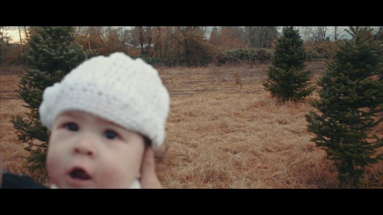 Northern Lights Christmas Tree Farm - YouTube
